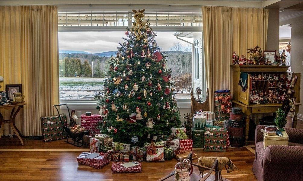 Den weihnachtsbaum richtig entsorgen for Weihnachtsbaum arten